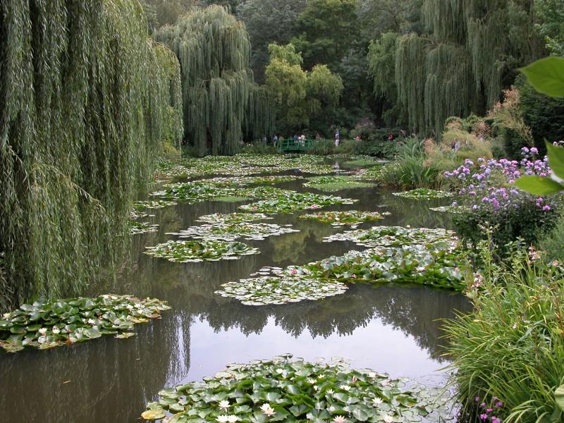 How Monet S Garden Grew