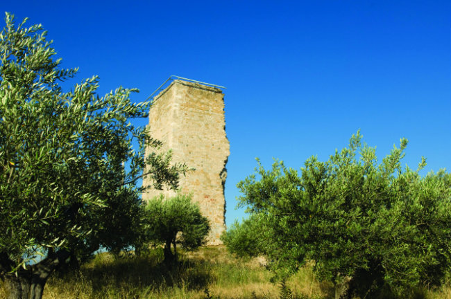 the watch-tower of the Mont d'Or