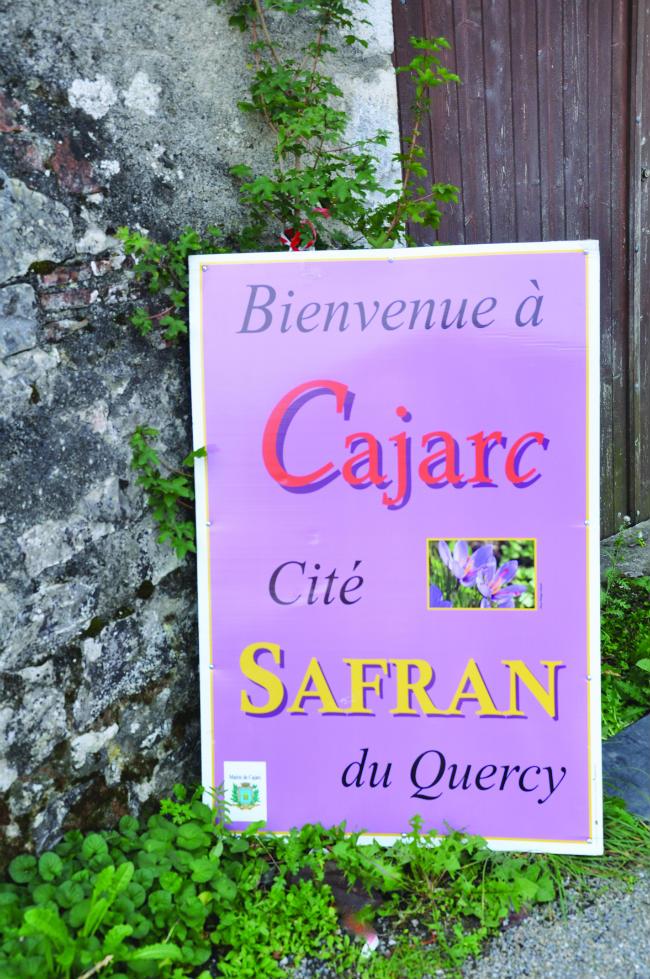 Cajarc, a village in the Lot, hosts a Saffron Festival
