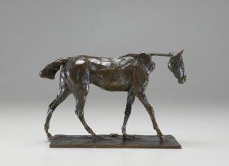 Degas, Thoroughbred Horse Walking