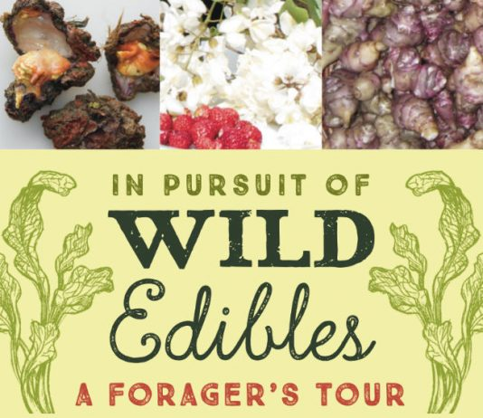 """In Pursuit of Wild Edibles"" by Jeffrey Greene"