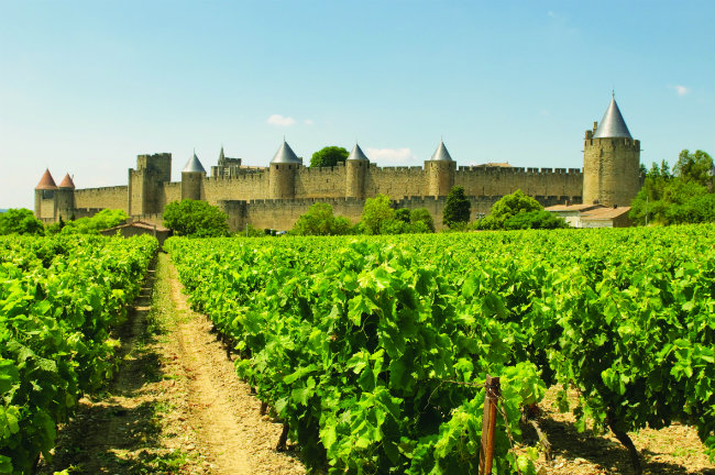 Historic Carcassonne and vineyards