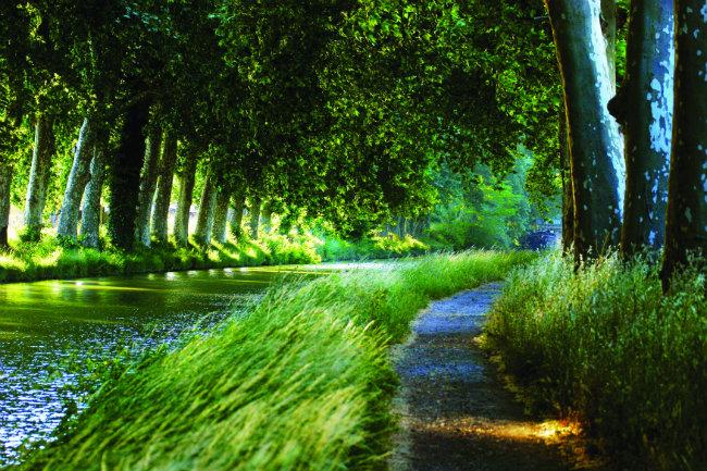 The Canal du Midi