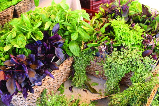 Arles farmers market