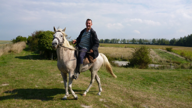 Horse riding on the track