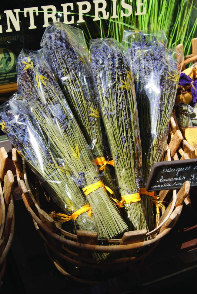 Saint-Rémy-de-Provence market