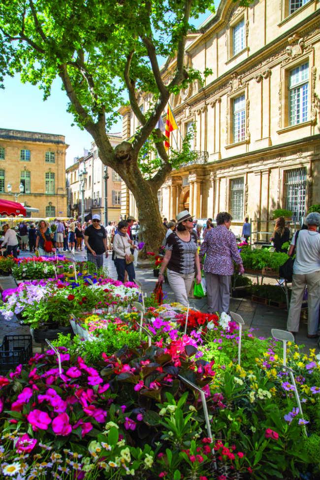 The flower market in Aix-en-Provence