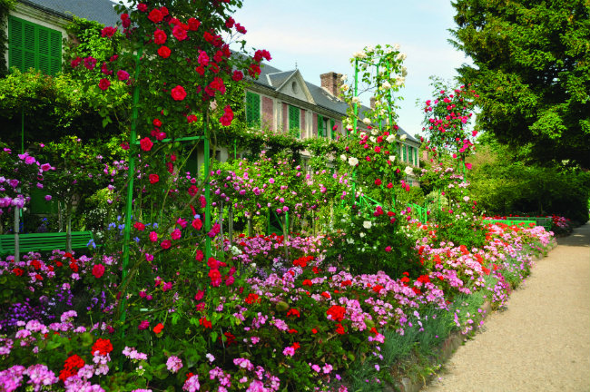 Rose Garden at Giverny