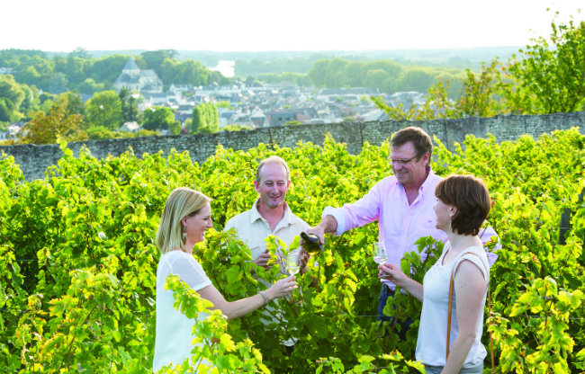 Tthe Loire Valley is densely planted with vineyards