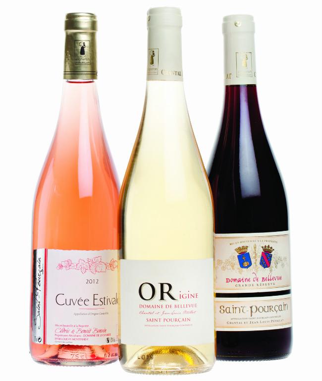 Saint-Pourçain wines