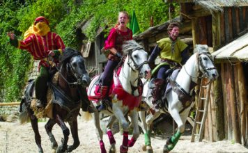 Medieval events in Provins
