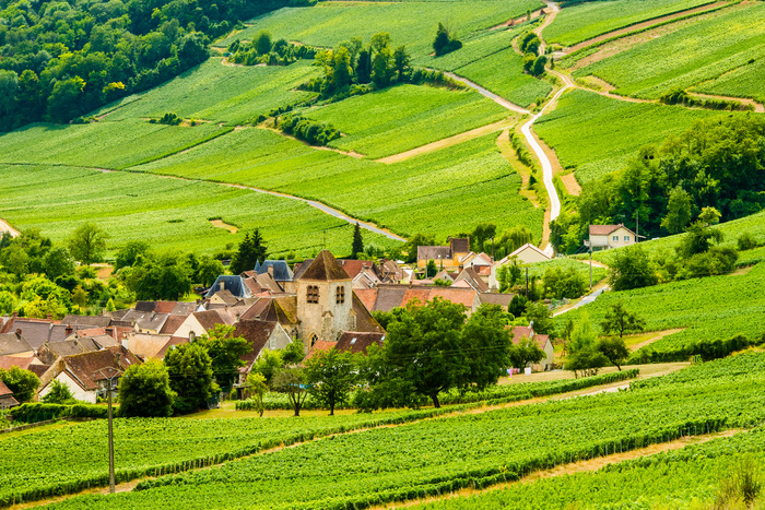 Visit Aisne: A Green Gem Steeped in History