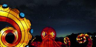 Illuminated Ocean at the Jardin des Plantes Light Festival