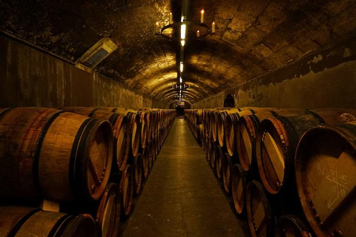 Exploring Bordeaux' Médoc Wine Regions