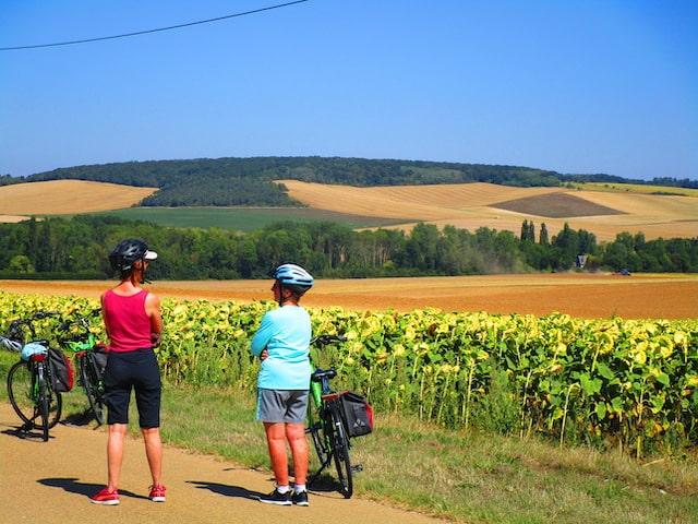 Burgundy countryside