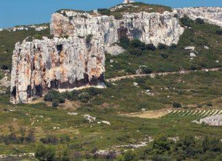 Coteaux d'Aix