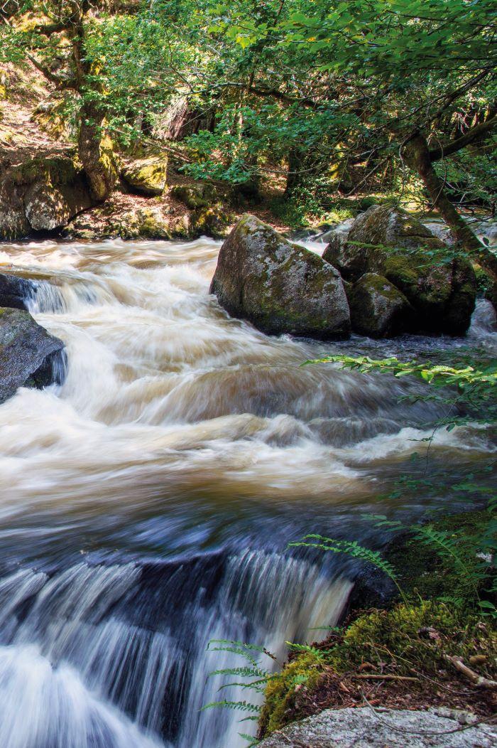 The Chalaux river wending its way through the Morvan park (Photo Alain Doire, Bourgogne-Franche-Comté Tourisme)