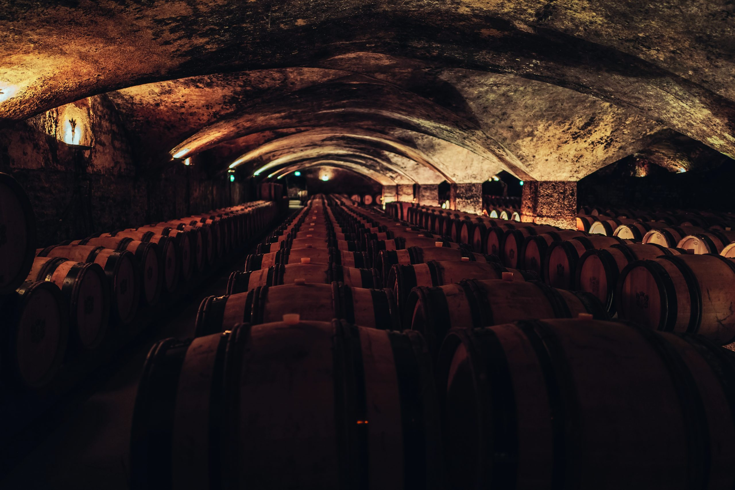 ; a wine cellar in Beaune; the region produces many fine wines; bustling terrasses in Dijon