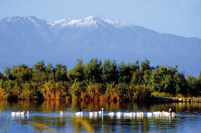 The Pic du Canigou in the Pyrenees is a breathtaking sight