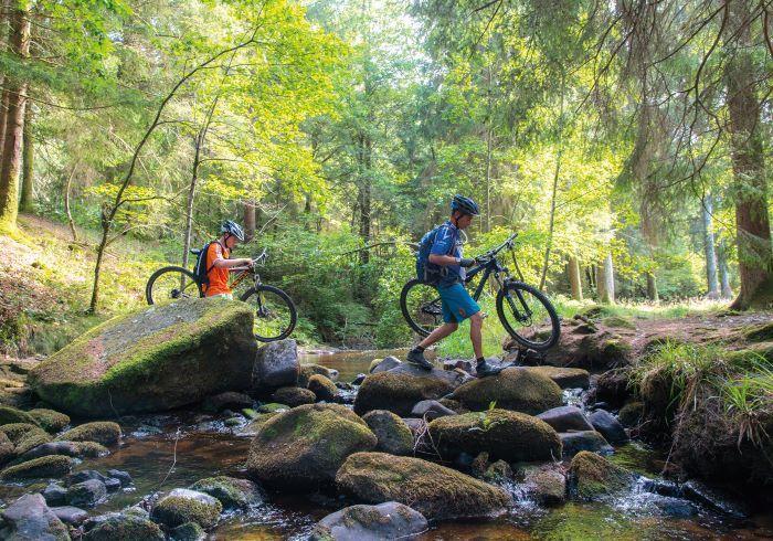 Mountain biking in the Morvan park (Photo Alain Doire, Bourgogne-Franche-Comté Tourisme